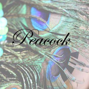 Peacock - Saraden Designs