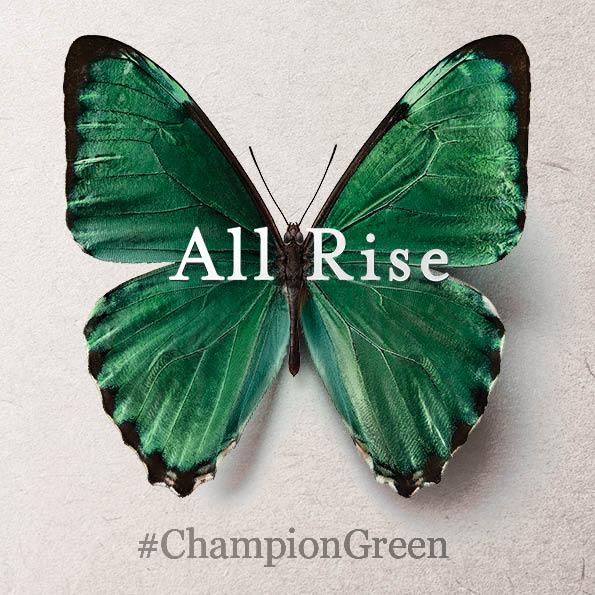 Champion Green - Supporting Local Irish Businesses - Saraden Designs Millinery Atelier Irish Designer