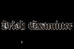 Irish Examiner, Ladies Day, Horse Racing, Newspaper, Sarah O' Rourke, Saraden Designs Millinery Atelier, Interview,